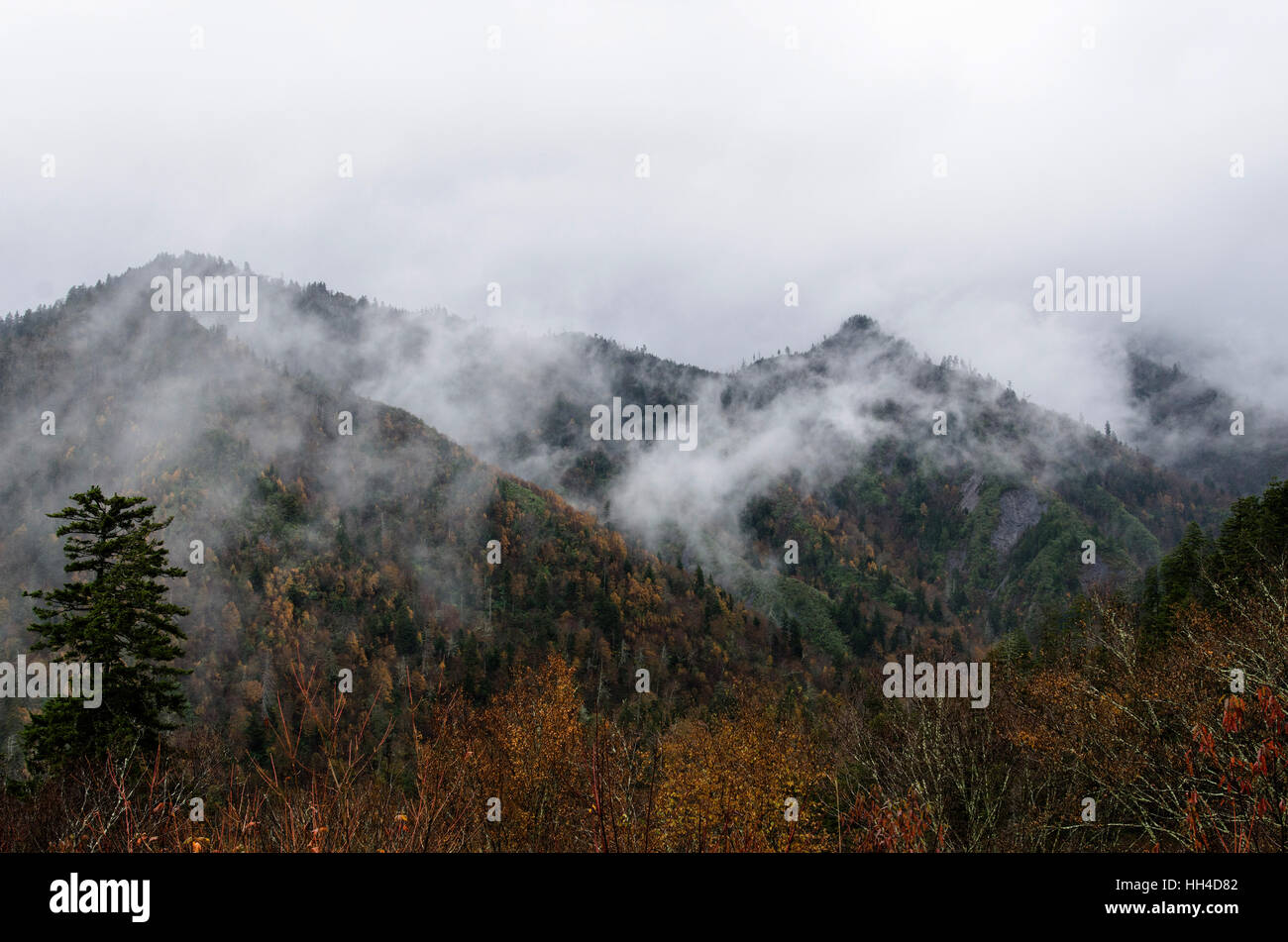 Cloudy Chimney Tops, Great Smoky Mountains National Park, Tennessee - Stock Image