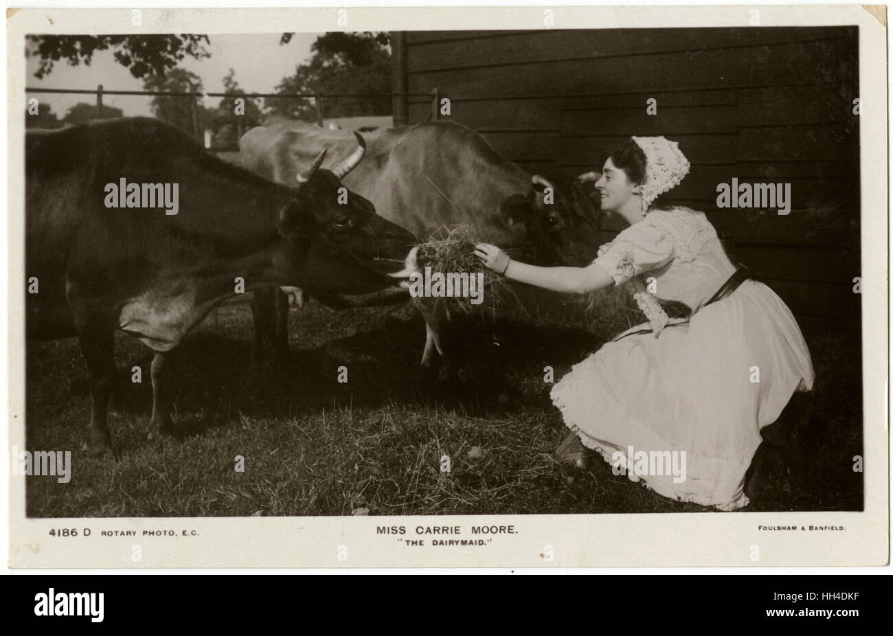 Carrie Moore, popular actress,  rehearsing for her role in  'The Dairymaid' - or did they  have real live - Stock Image
