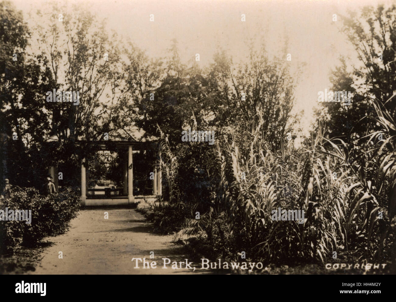 The Park, Bulawayo, Southern Rhodesia (now Zimbabwe). - Stock Image