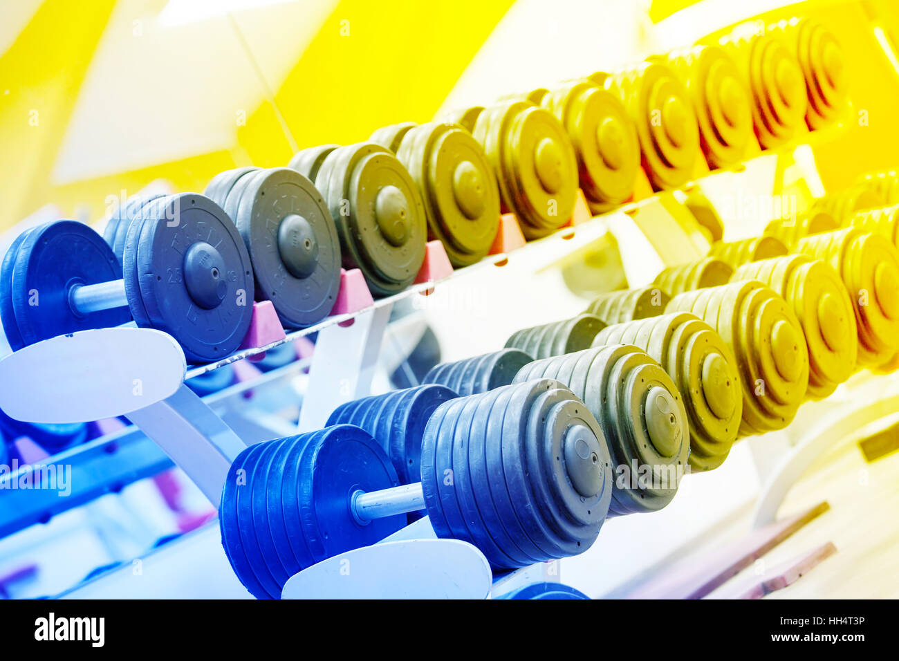 Stand with a dumbbell in the gym toned in blue and yellow - Stock Image