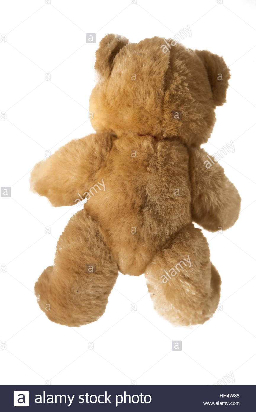 Teddy bear seen from the rear on a white background. - Stock Image