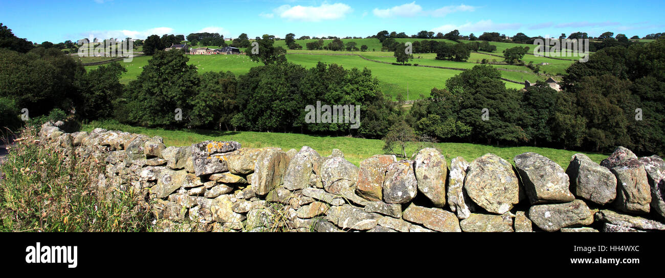 Landscape view over Blackton village, Upper Teesdale, Durham County, England, Britain, UK - Stock Image