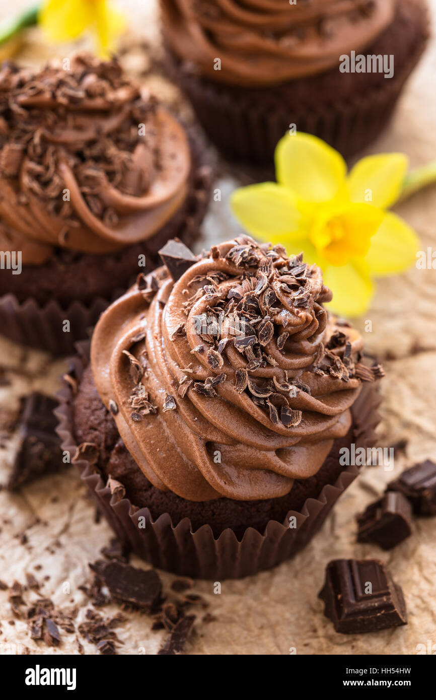 Delicious Mothers day  chocolate cupcakes  with spring flowers - Stock Image
