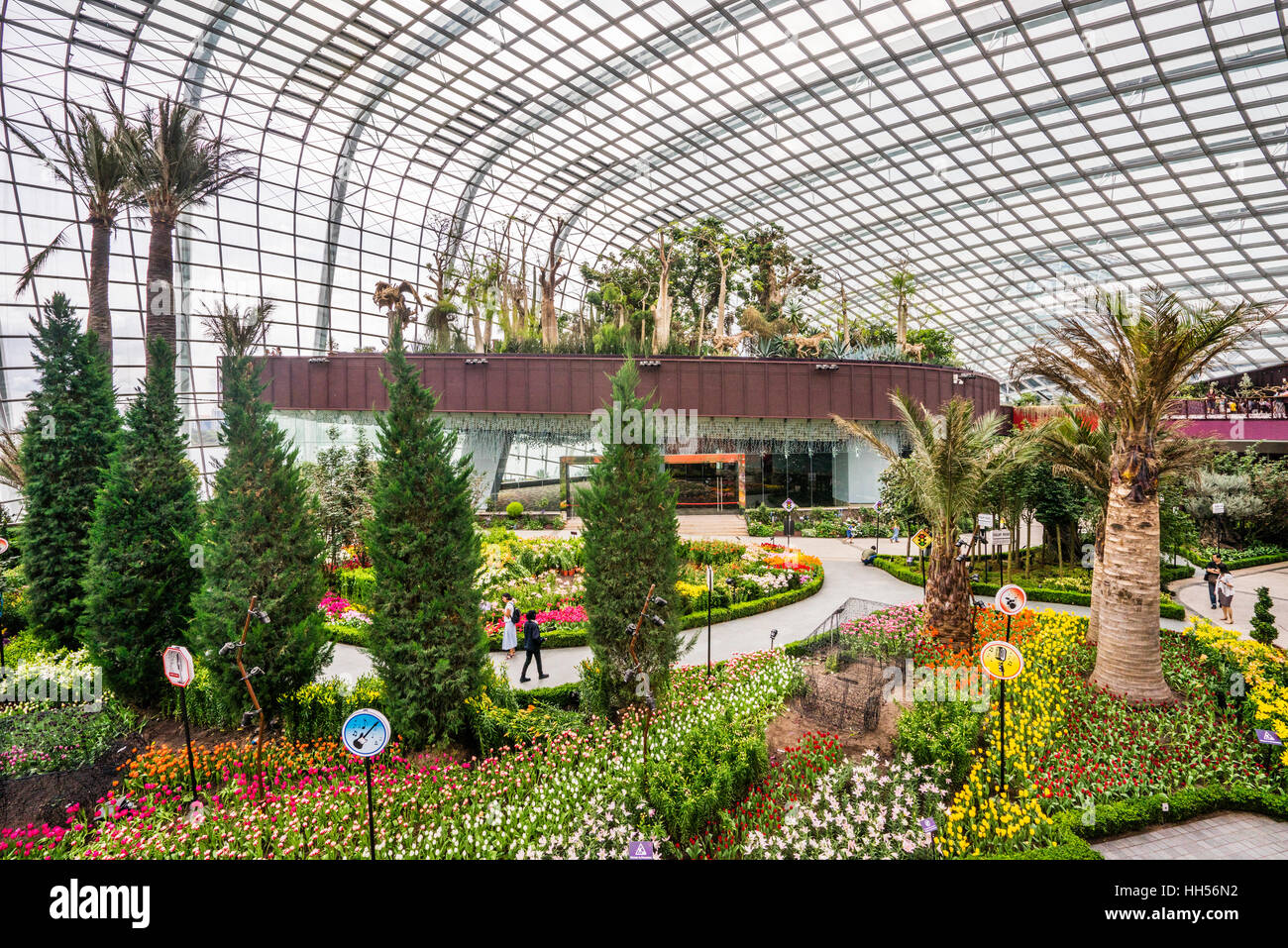Singapore, Gardens by the Bay, the Flower Dome giant green house - Stock Image