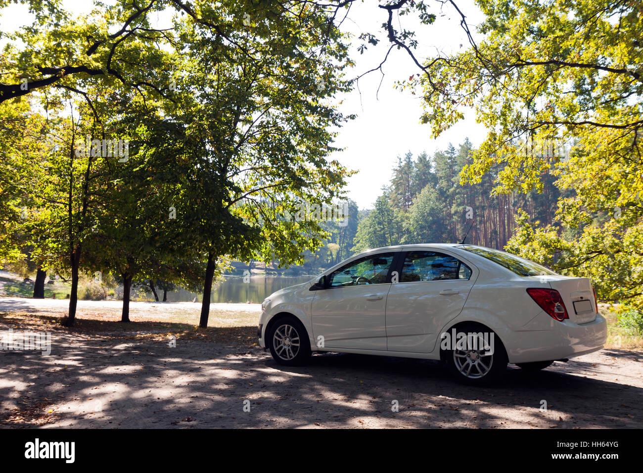 white car on the lake Stock Photo