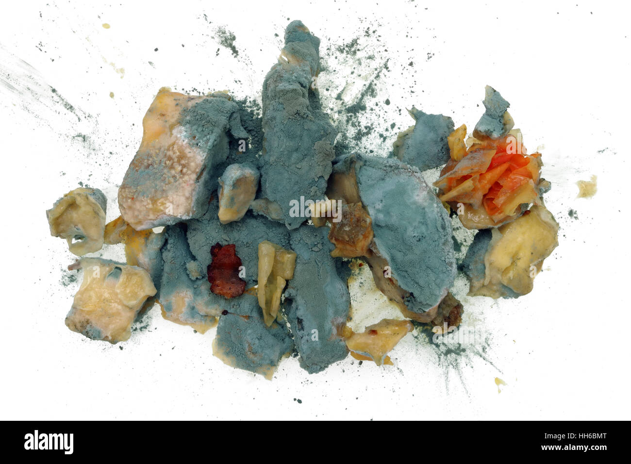 The blue food mold Penicillin grows on the forgotten in a white plate  macaroni pasta - Stock Image