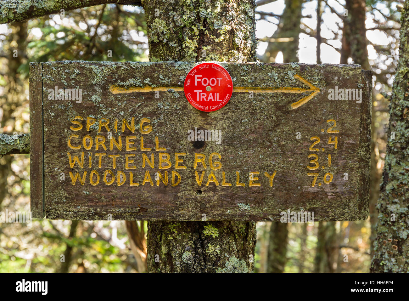 An aged trail sign on the back side of Slide Mountain on the Slide-Cornell-Wittenburg Trail in the Catskills Mountains - Stock Image