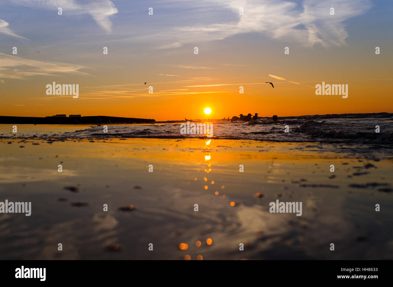 Brighton, East Sussex. 18th January 2017. UK Weather. The sun rises over a low tide on very cold and frosty morning. - Stock Image