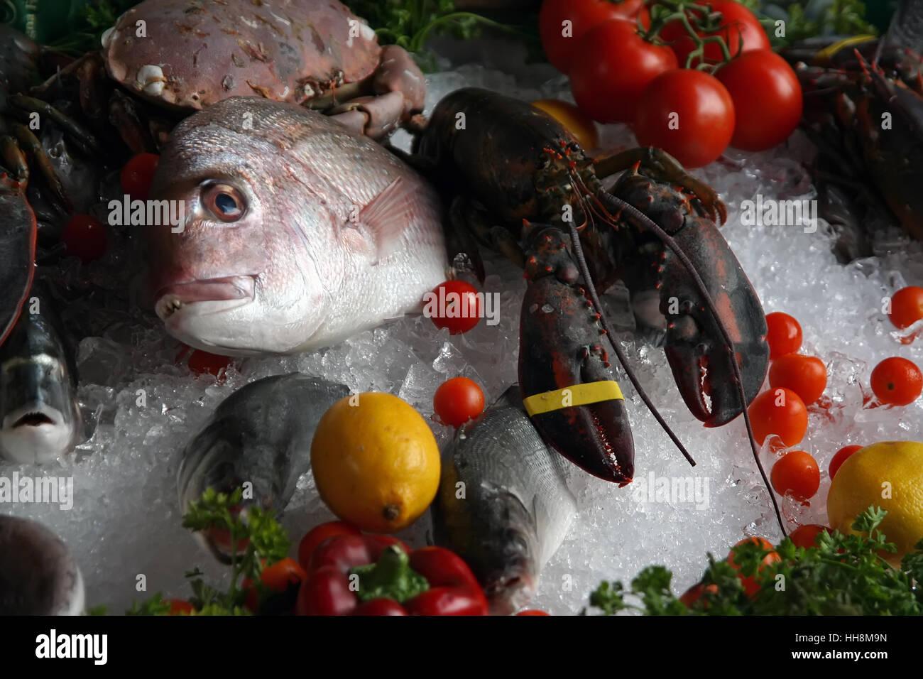 Sea food on a market. Sea food on ice. - Stock Image