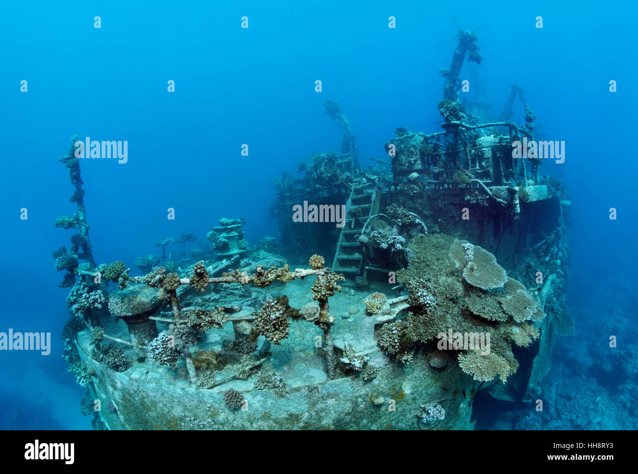 Stern of ship wreck, Russian wreck MS Khanka, former spy ship or communications ship, Zabargad Island, Red Sea, - Stock Image