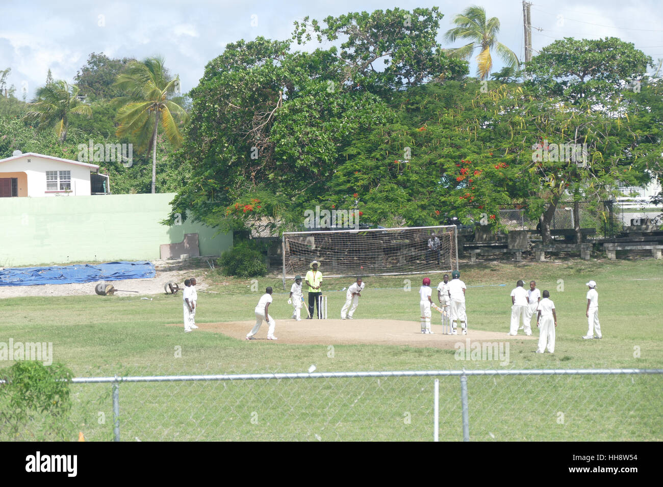 cricket match in the caribbean - Stock Image