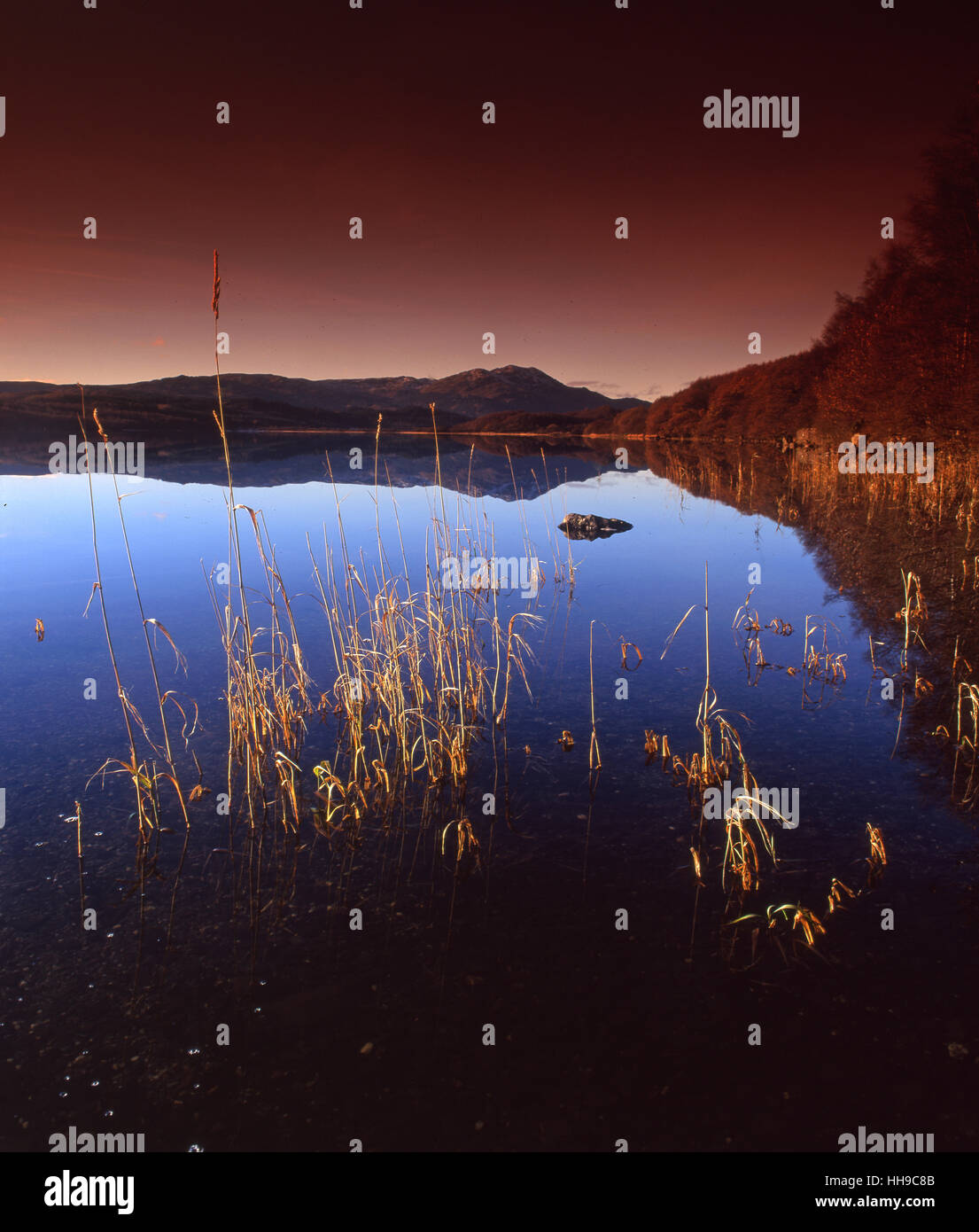 Peaceful reflections on Loch Venachar with Ben Venue in view, Stirling Region. - Stock Image