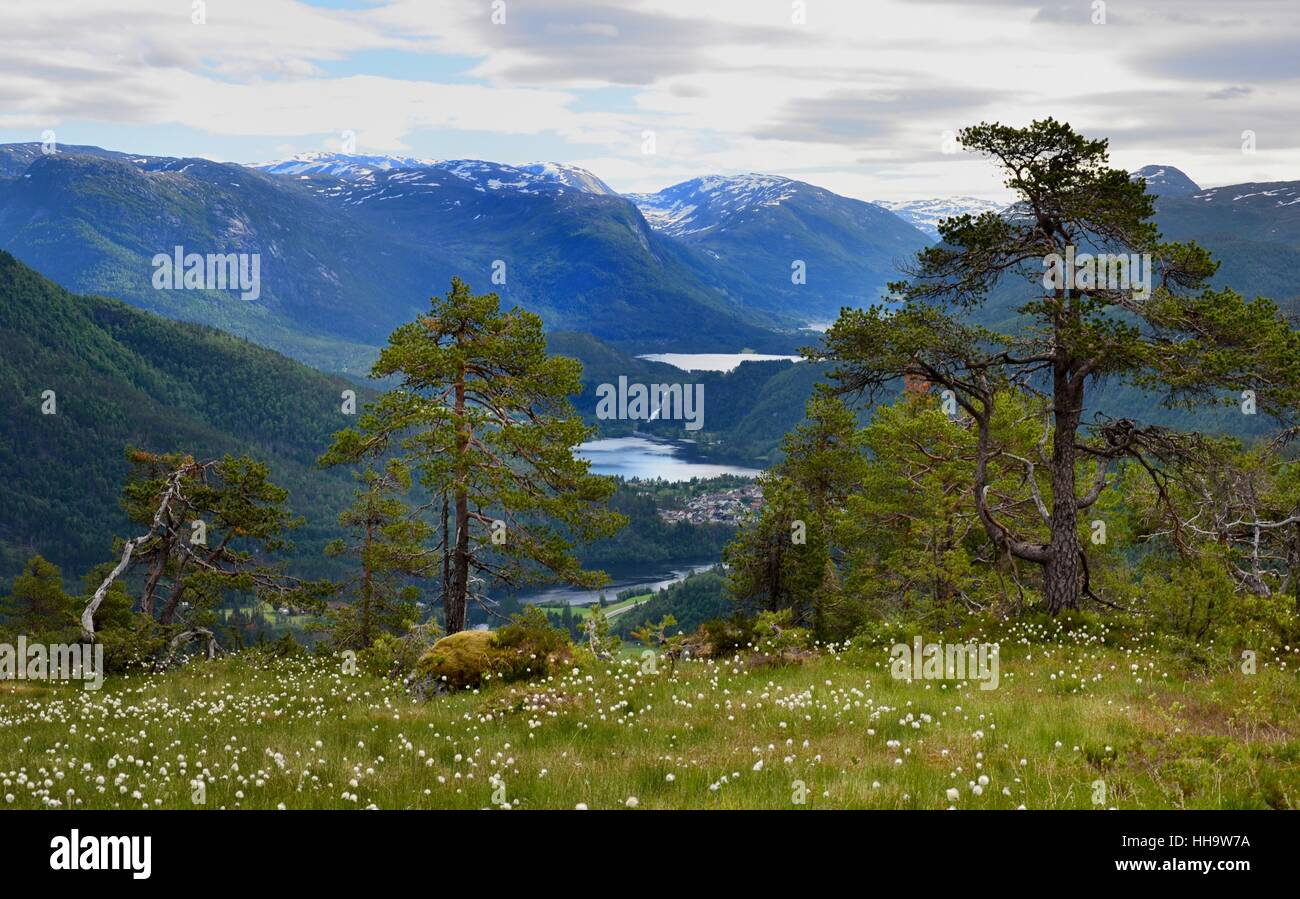 view from havstadfjellet (706 m) at fjord,norway - Stock Image