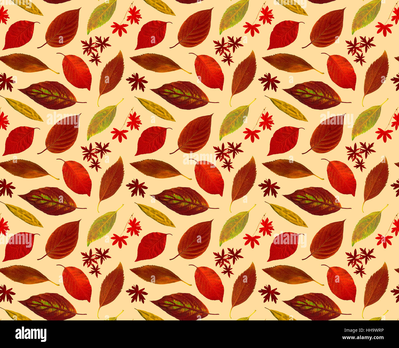 Colouring Wallpaper High Resolution Stock Photography And Images Alamy