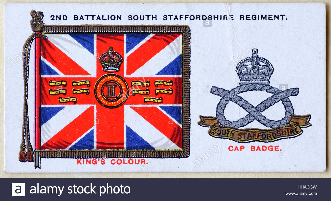 SOUTH STAFFORDSHIRE REGIMENT CUSTOM MADE TO ORDER VARIOUS FLAG SIZES