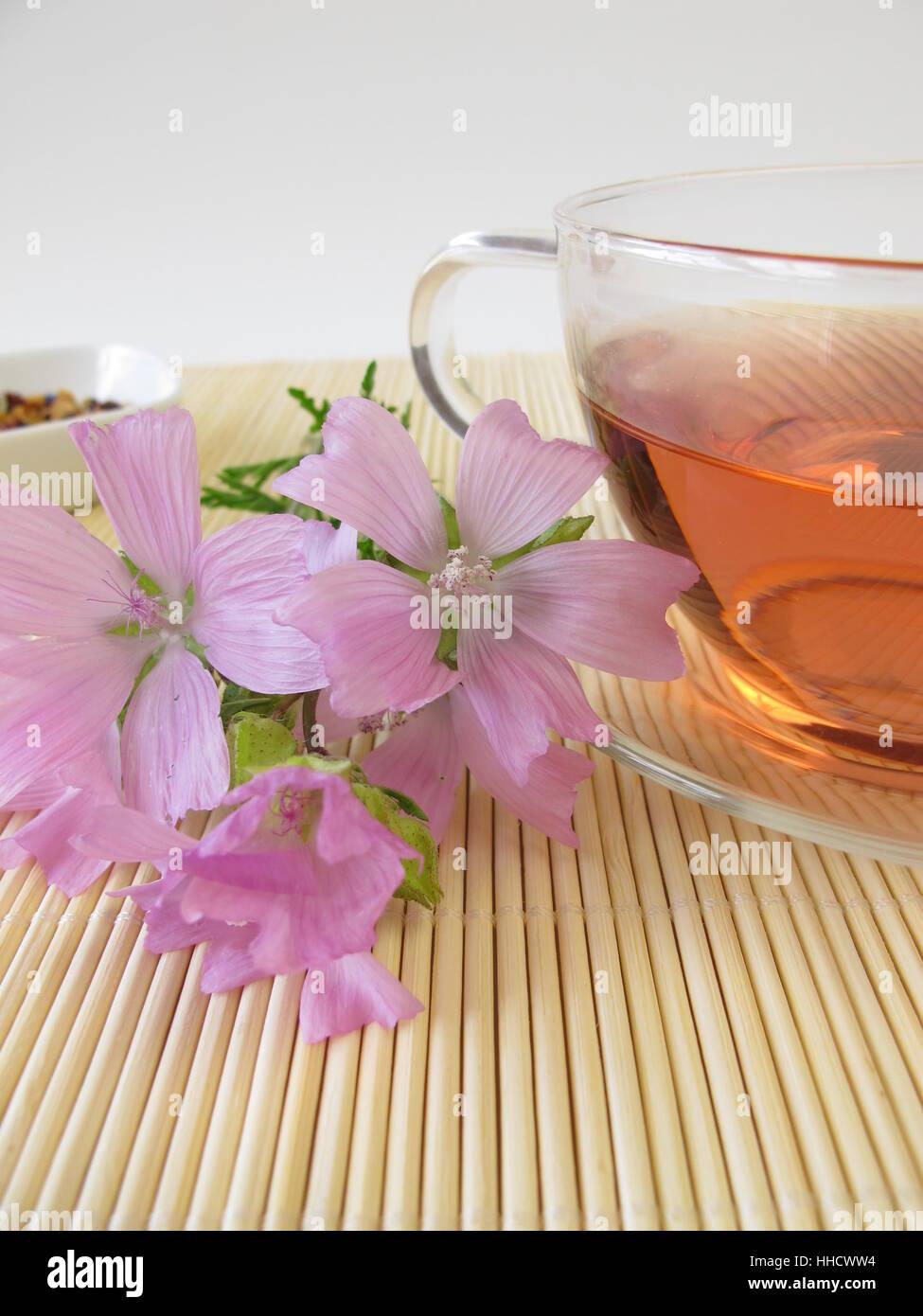 tea, cup, tea, blossoms, mallow, bleed, herb tea, tea-cup, savage, haggardly, Stock Photo