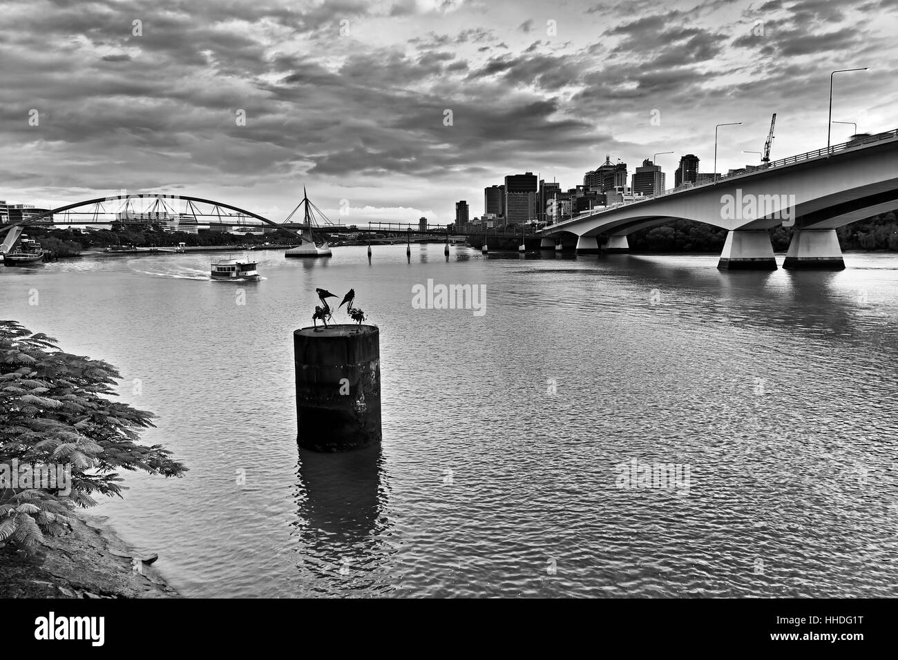 Brisbane city CBD across the river between Captain Cook's bridge and pedestrian bridge at sunrise in black-white. - Stock Image