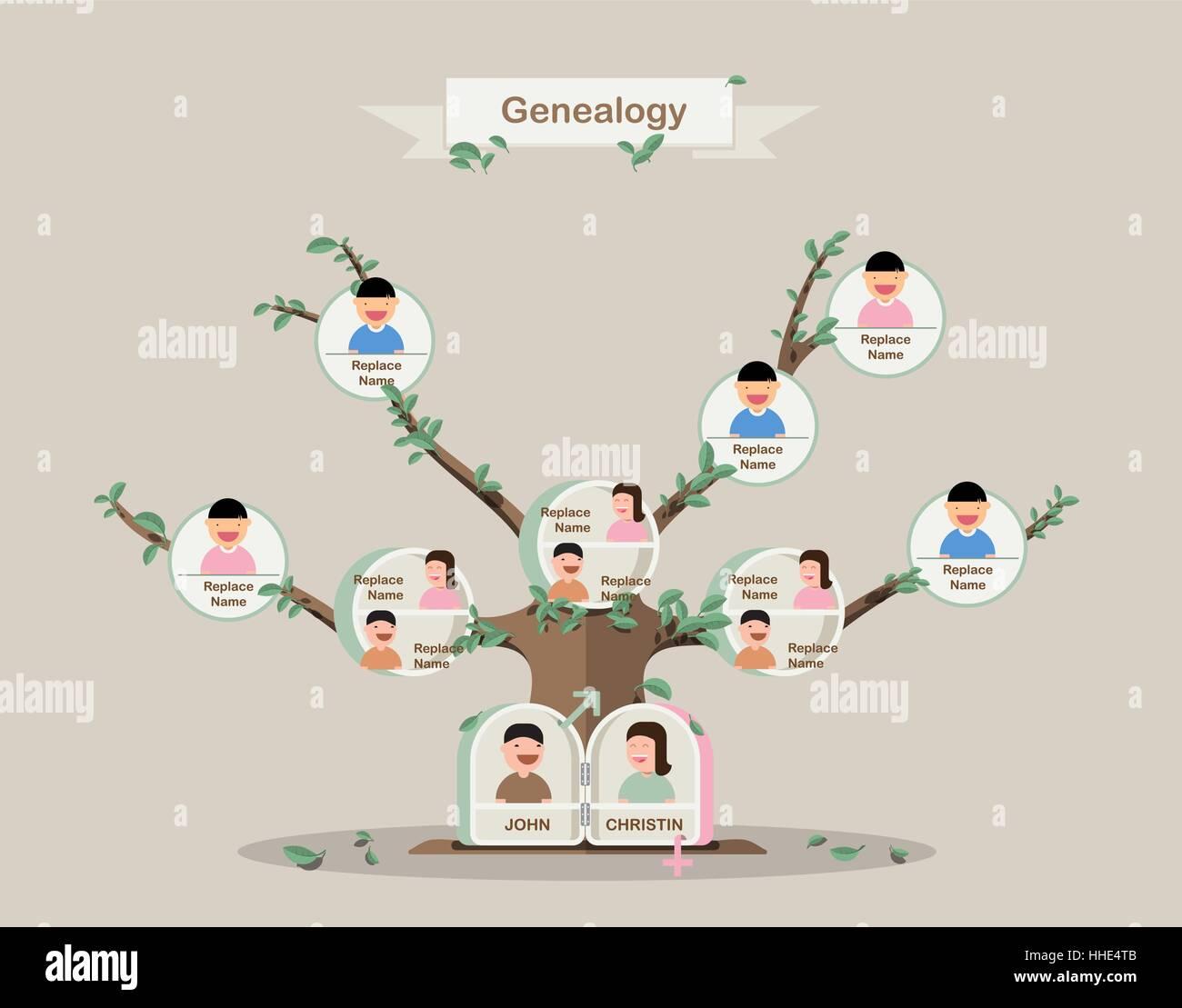 genealogical tree family tree in flatdesign pedigree template