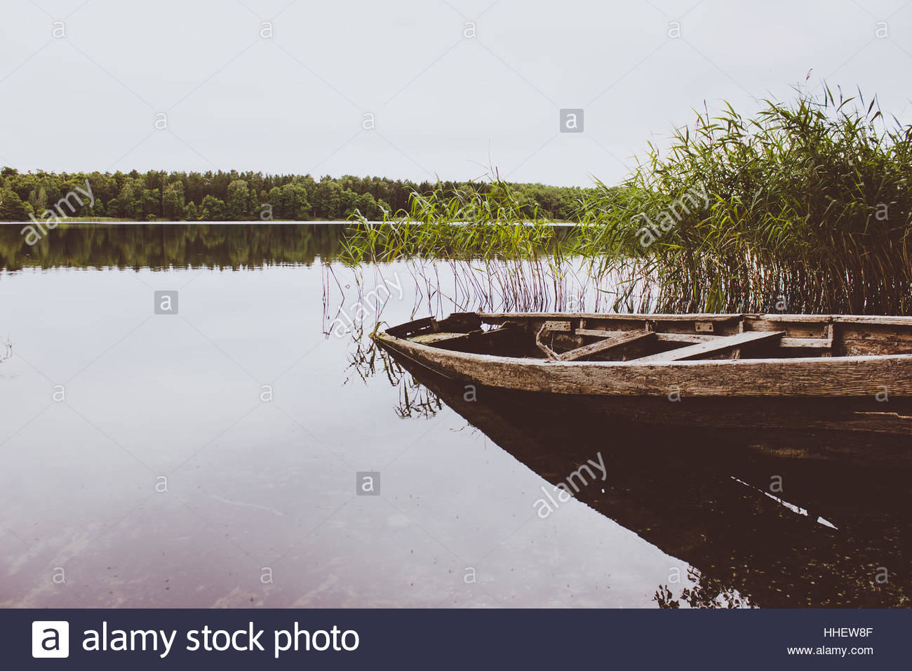 Broken Rowingboat in lake rowboat in Grimnitz Lake Brandenburg, ship broken   rustic boat forgotten conceptual photography - Stock Image