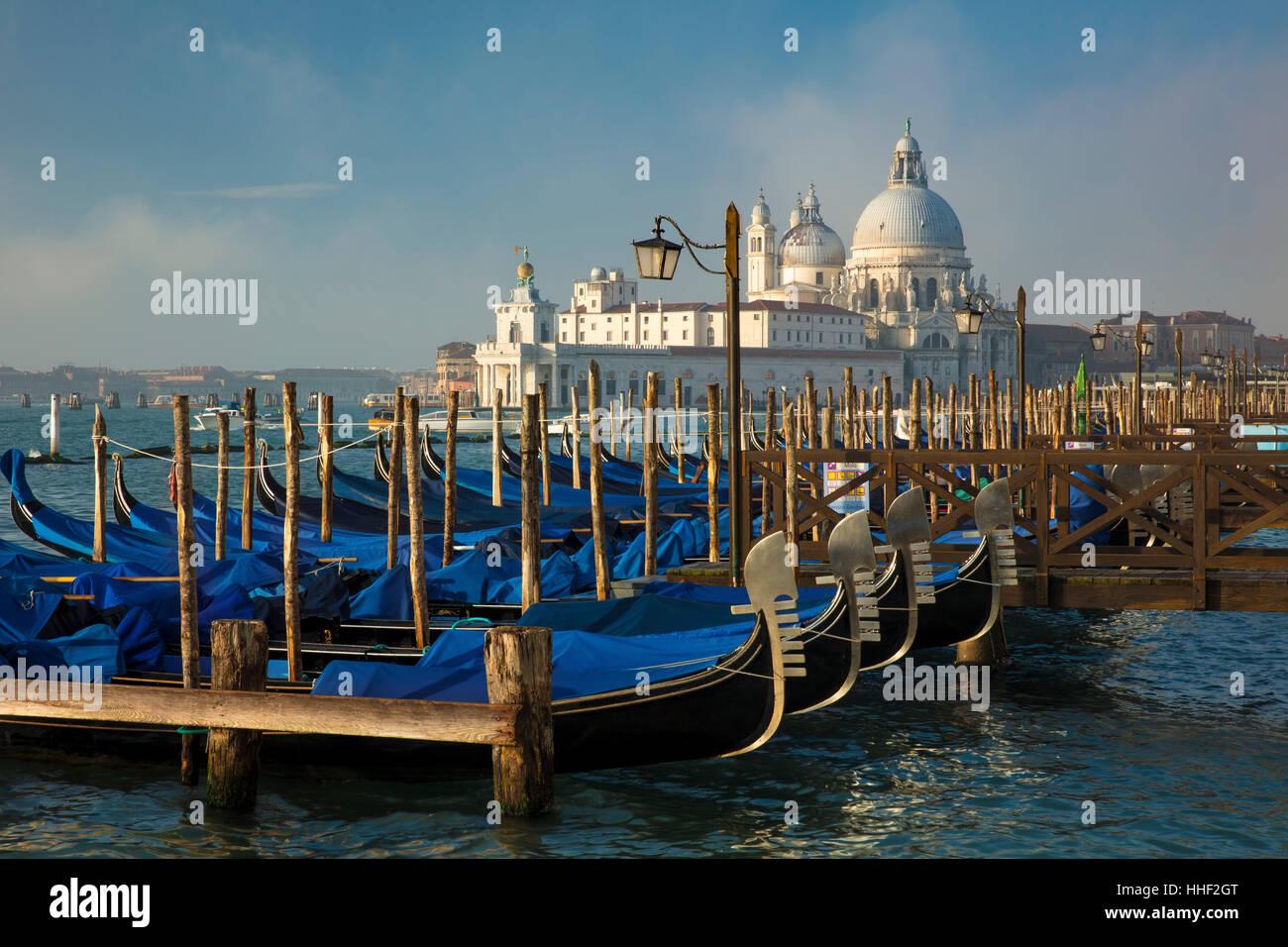 Bobbing gondolas below Santa Maria della Salute, Venice, Veneto, Italy - Stock Image