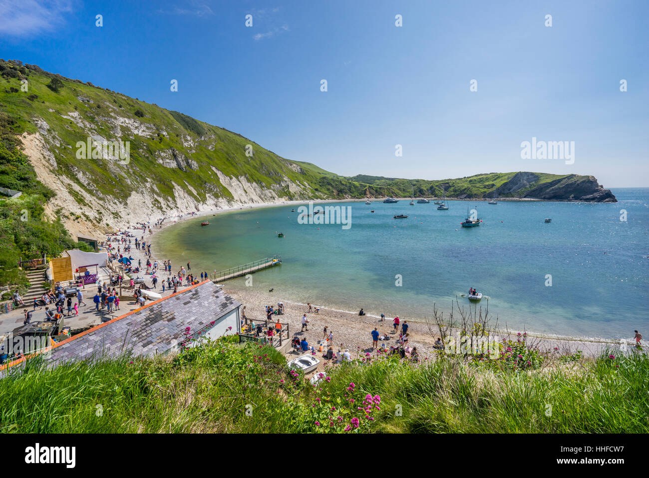 Great Britain, South West England, Dorset, Jurassic Coast, chalk cliffs  at Lulworth Cove - Stock Image