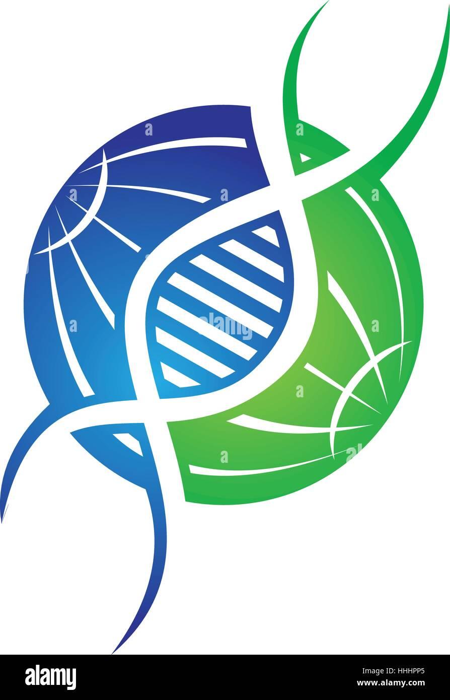 DNA Genetics - Stock Image