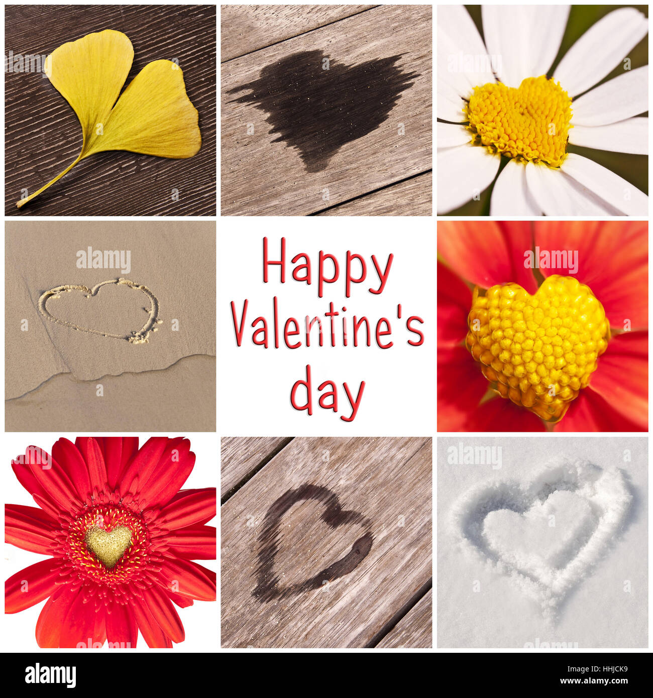 Collection of hearts in nature, valentine greeting card - Stock Image