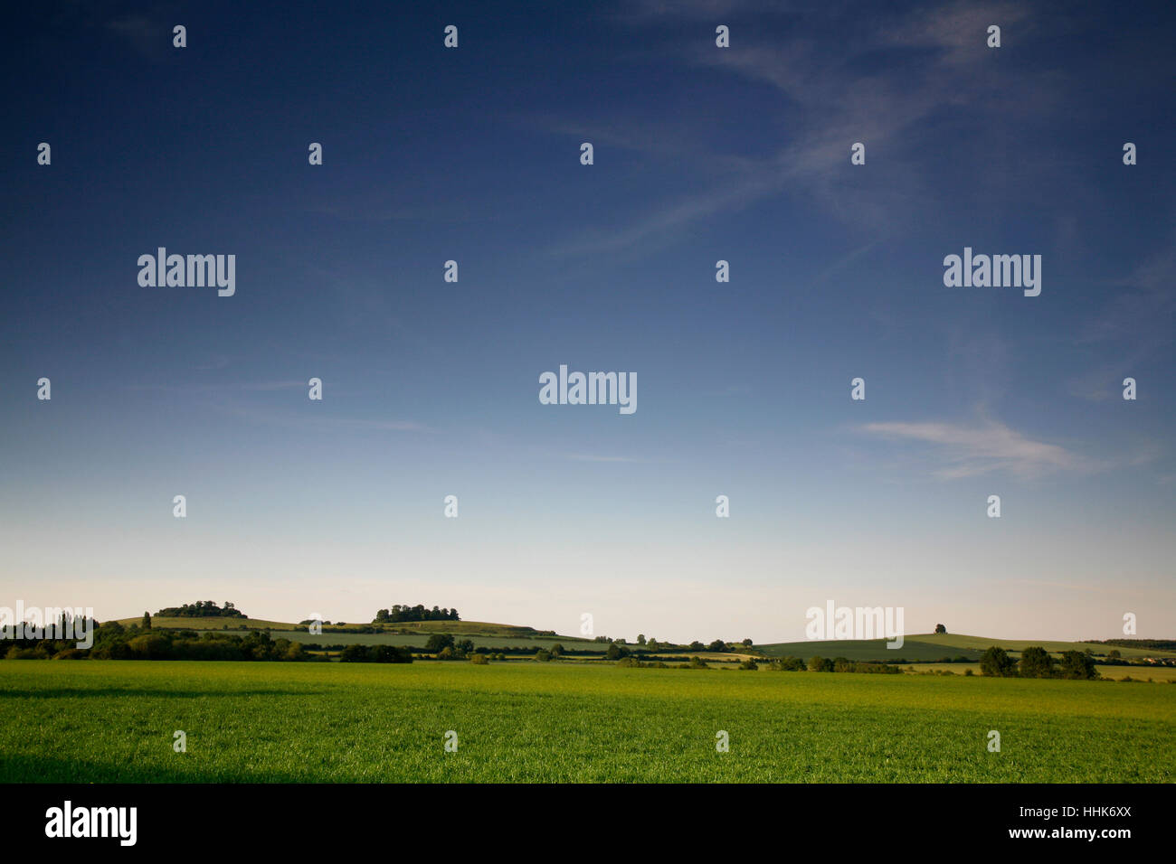 Wittenham Clumps and Brightwell Barrow, Oxfordshire, England, UK - Stock Image