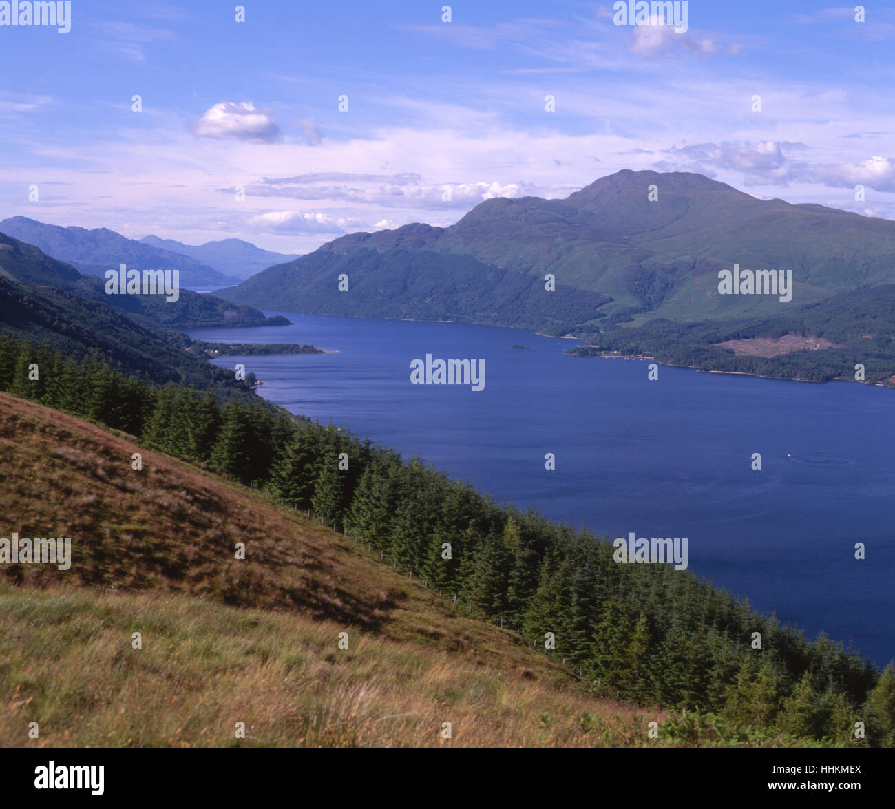 Summer view of Loch Lomond and Ben Lomond, Dumbartonshire Stock Photo