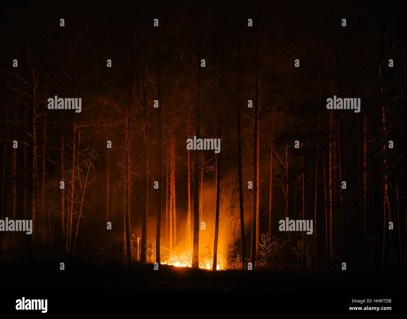 The murder of the beautiful remains of a large wildfire. Beauty - terrible force . - Stock Image