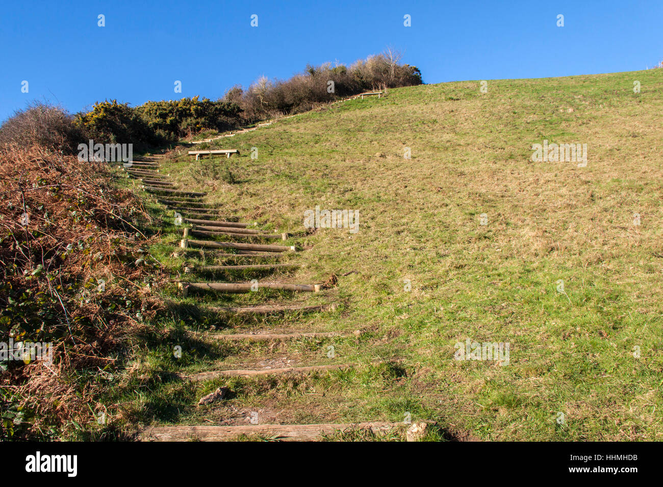 Endless steps climbing up from Salcombe Mouth, near Sidmouth, to the top of the cliffs on the South West Coastal - Stock Image