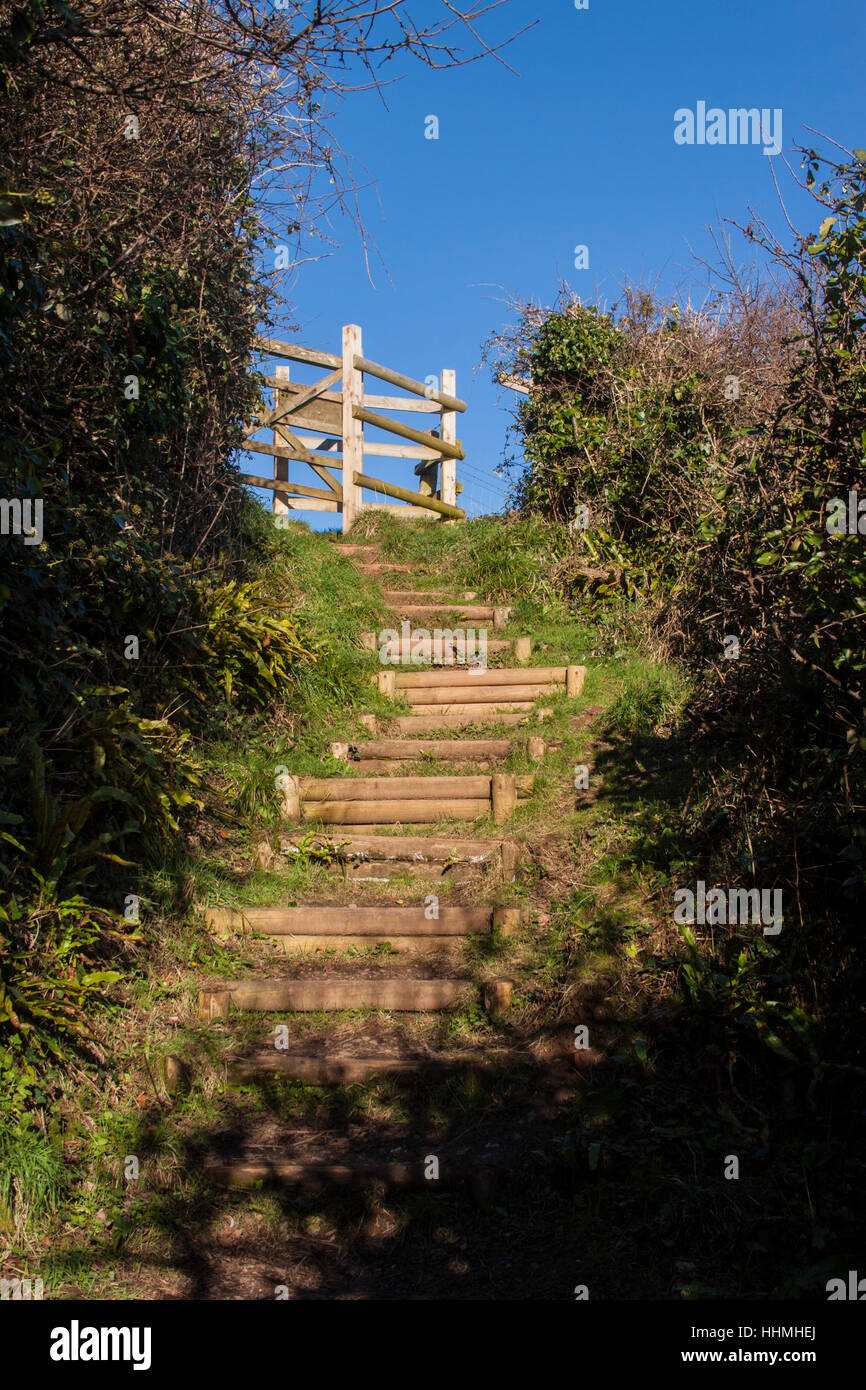 Endless steps climbing up from the beach at Salcombe Mouth, near Sidmouth, to join the South West Coastal Path. Stock Photo