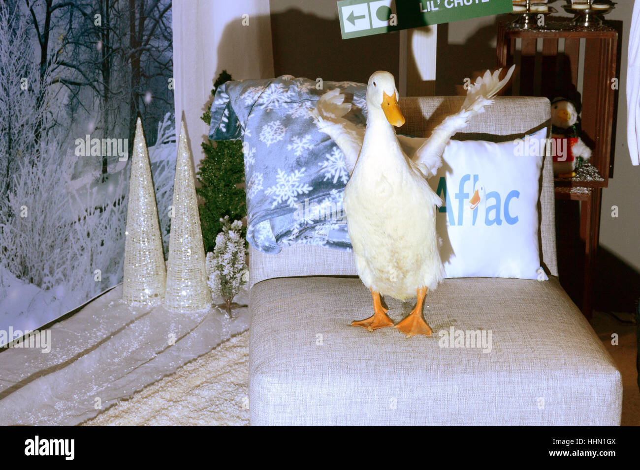 aflac duck stock photos aflac duck stock images alamy