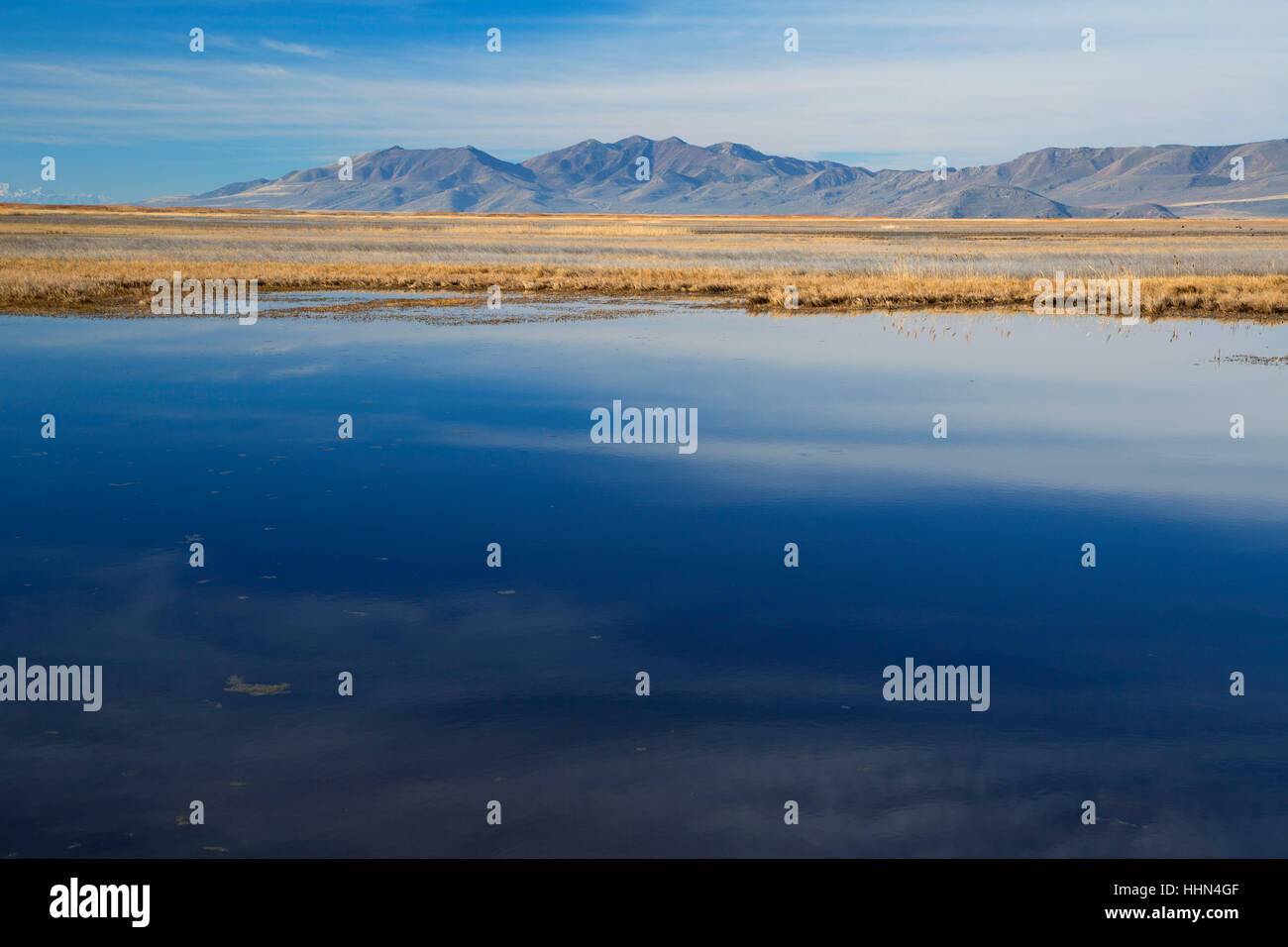 Great Salt Lake, Bear River Migratory Bird Refuge, Utah - Stock Image