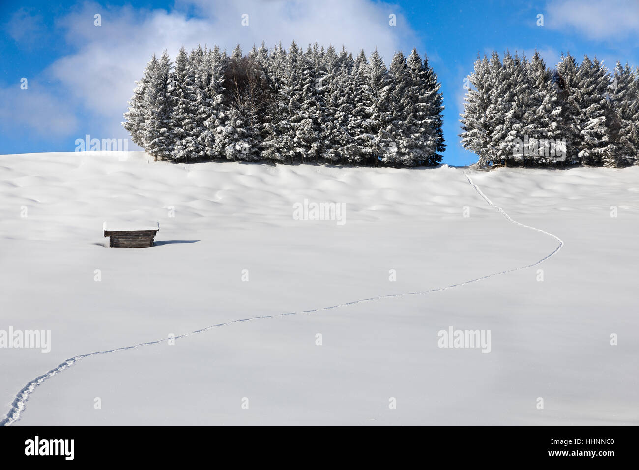 Traces in the snow, German Alps Stock Photo
