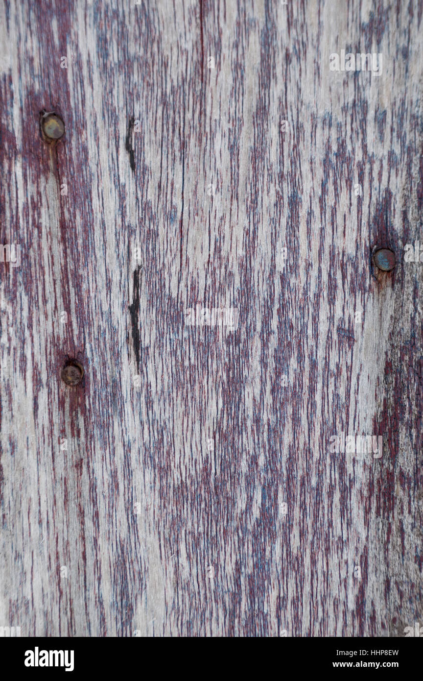 Shows woodgrain and three rusty nail heads and the other paint is blue underneath. Very worn and faded. - Stock Image