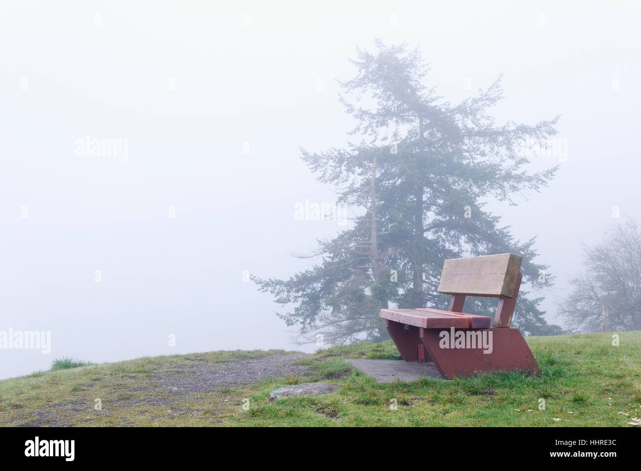 Winter fog obscures the view from a wooden park bench atop a hill on Gabriola Island, British Columbia. Stock Photo