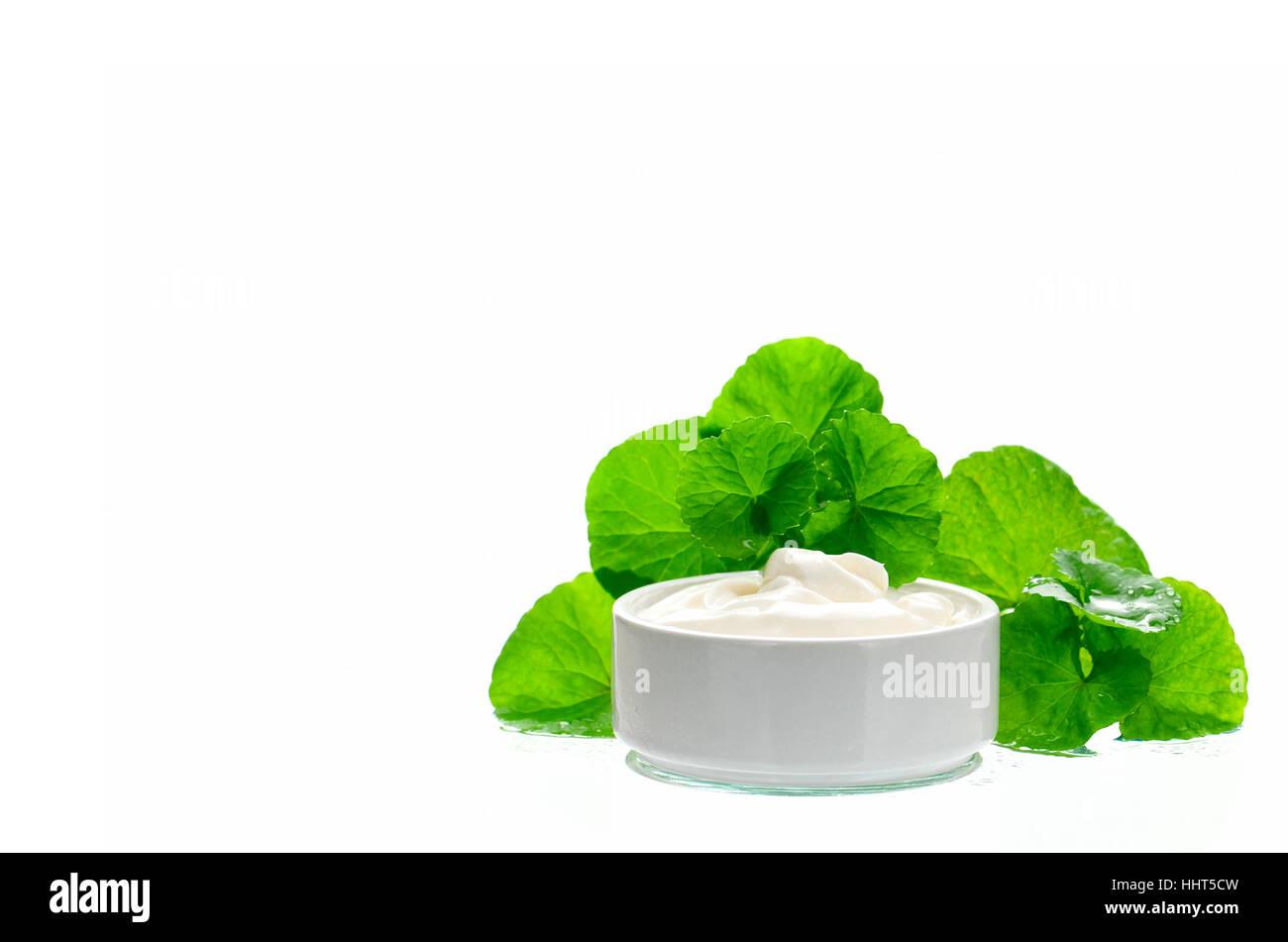 Indian pennywort (Centella asiatica (L.) Urban.) anti-aging skin care product. - Stock Image