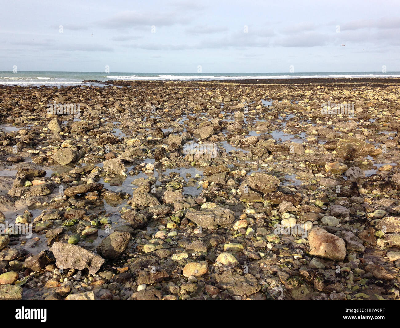 Rocky seacoast in Yport, Normandy, France - Stock Image