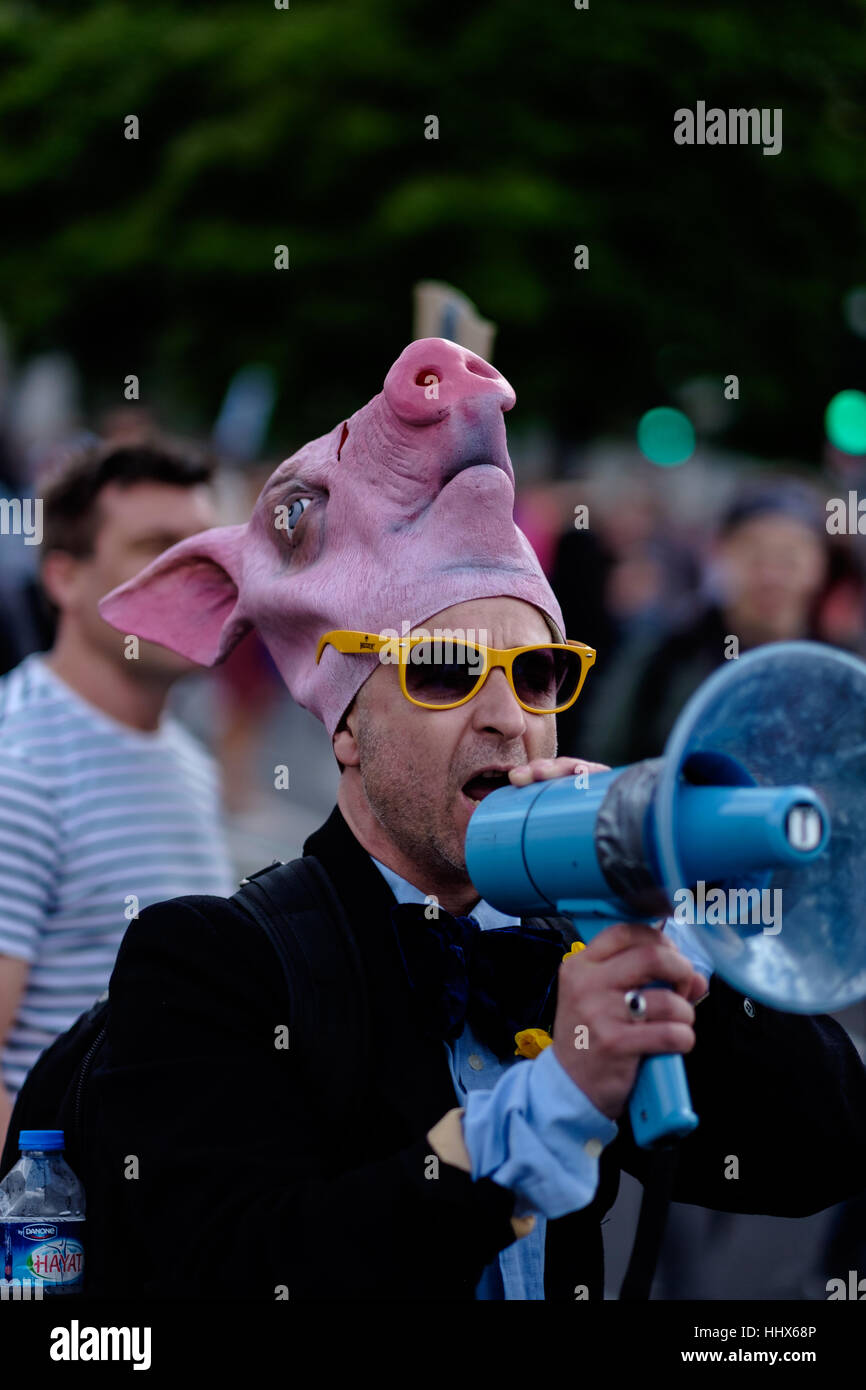 Protester wearing a rubber pig's head mask and yellow sunglasses uses a loud hailer - Stock Image