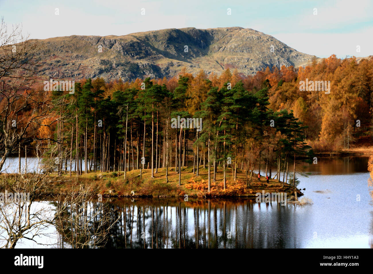 A quiet autumnal day at Tarn Howes, Cumbria. - Stock Image