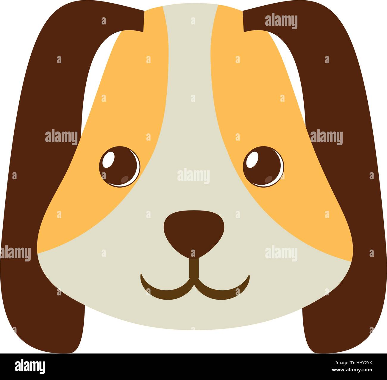 puppy face ear long brown pet - Stock Image
