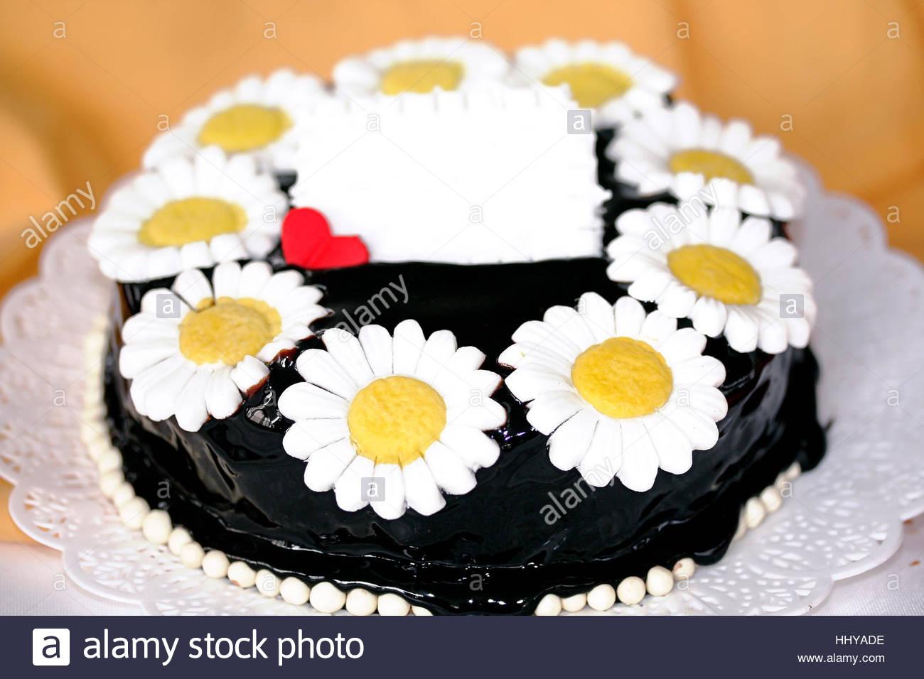 Daisy Cake Stock Photos Daisy Cake Stock Images Alamy