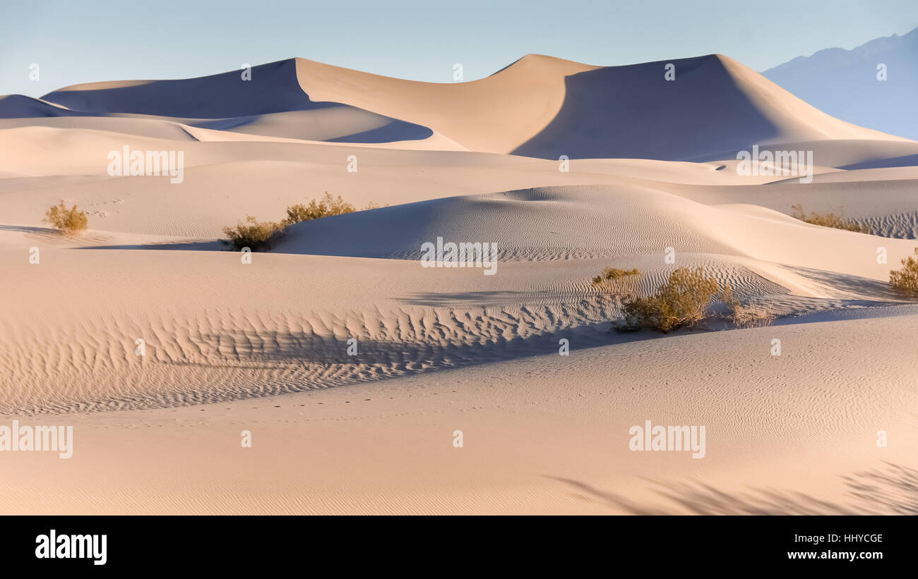 Early Morning On The Mesquite Flat Sand Dunes - Stock Image