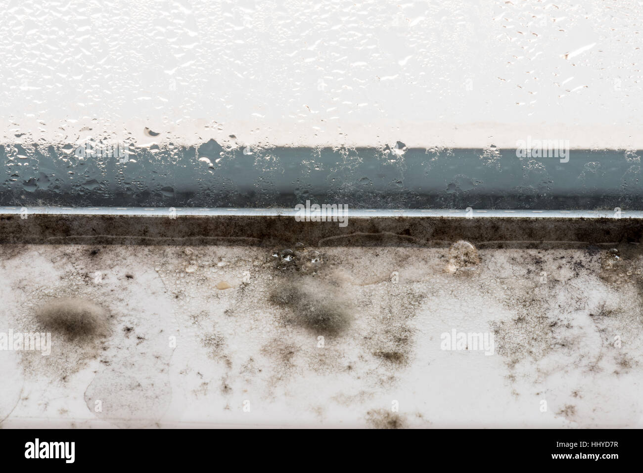 Mold on modern plastic windows, mold, fungus, mold, repair, house, repair, airing, sick, pathogenic, dangerous, - Stock Image