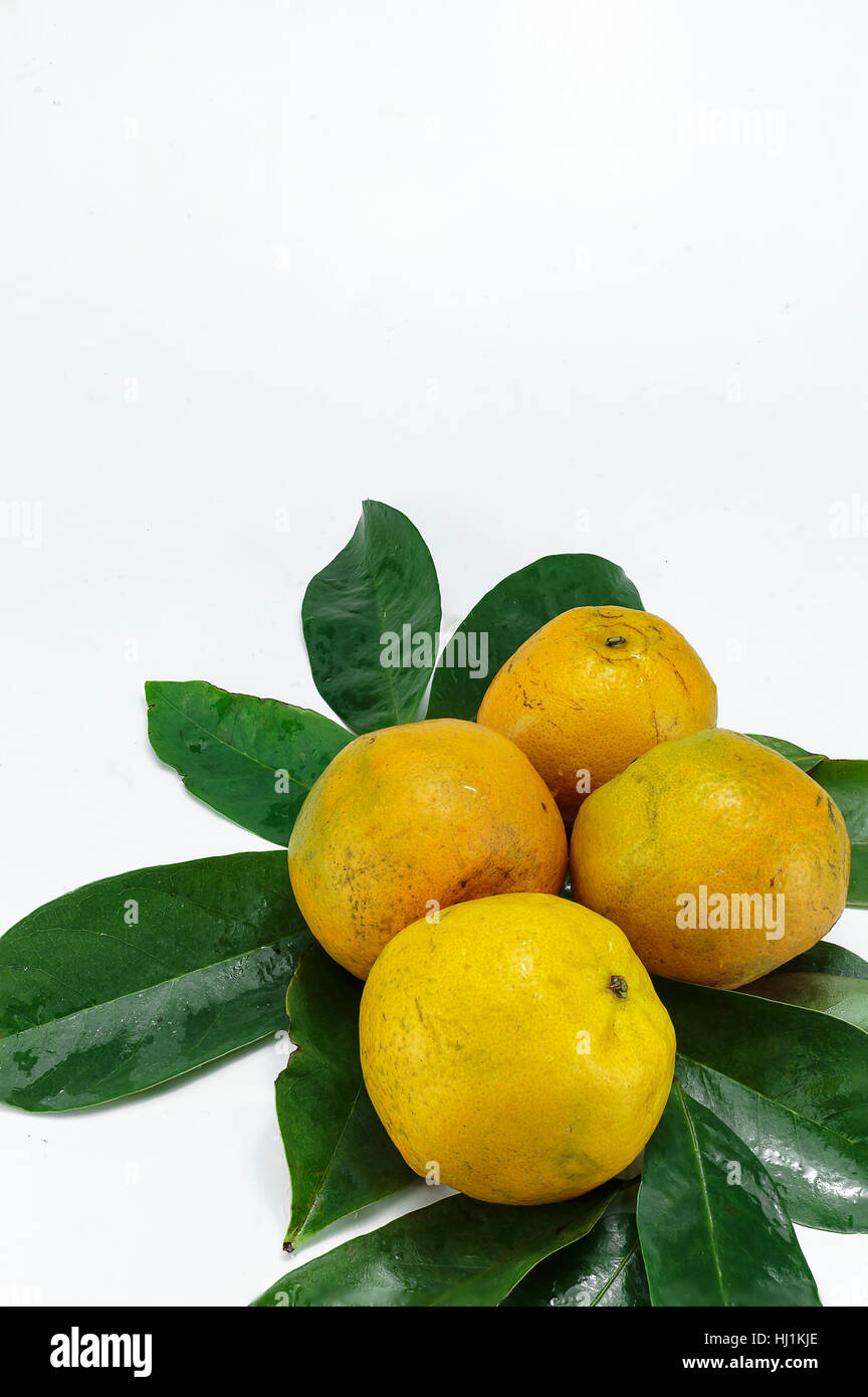 Fresh oranges and leaves on a white background Stock Photo