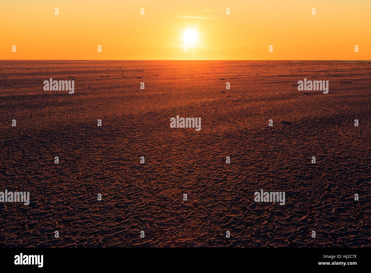 Low the sun over a sea ice field - Stock Image