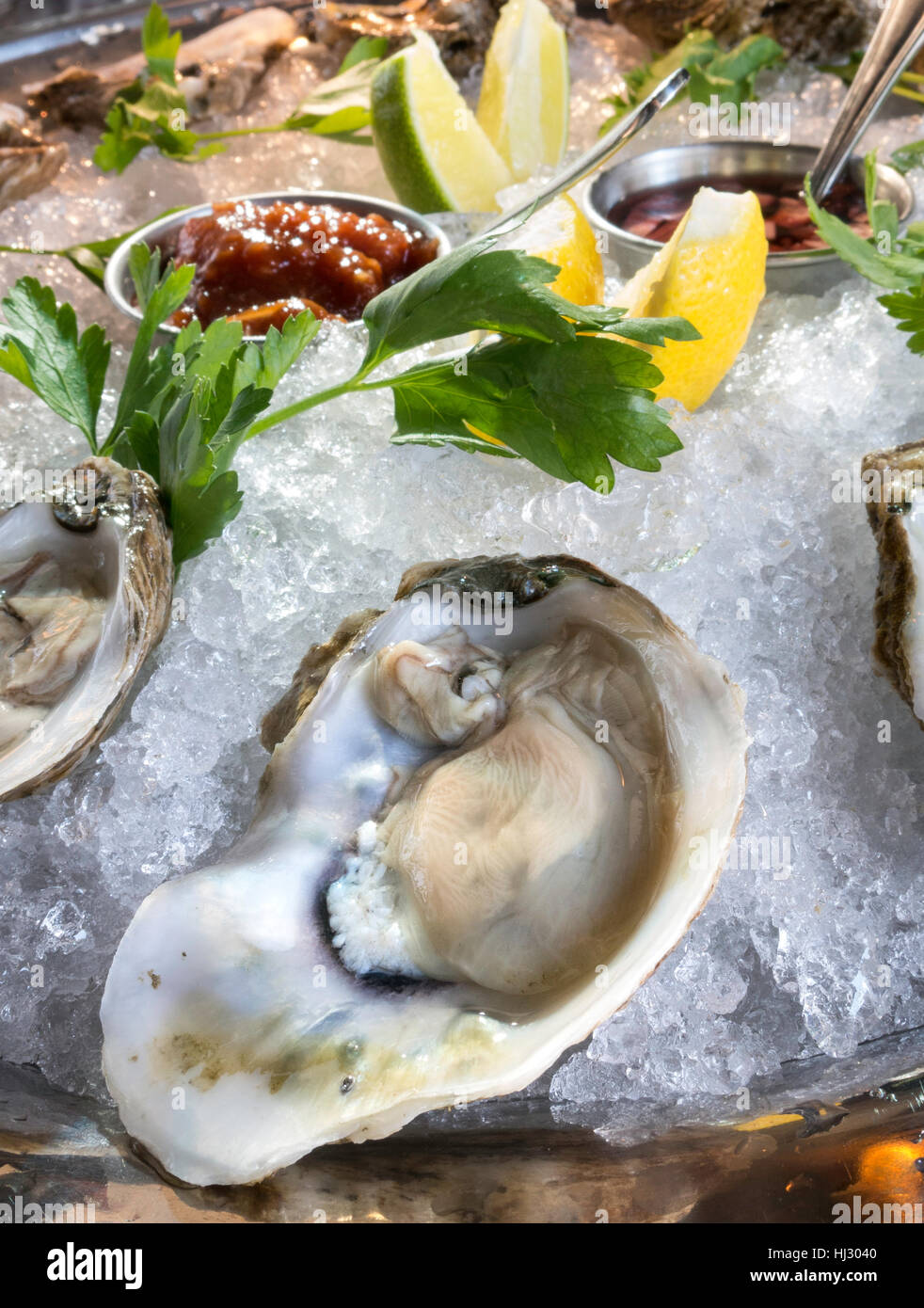 Raw Oysters on the Halfshell, Gourmet Restaurant Dining, USA - Stock Image