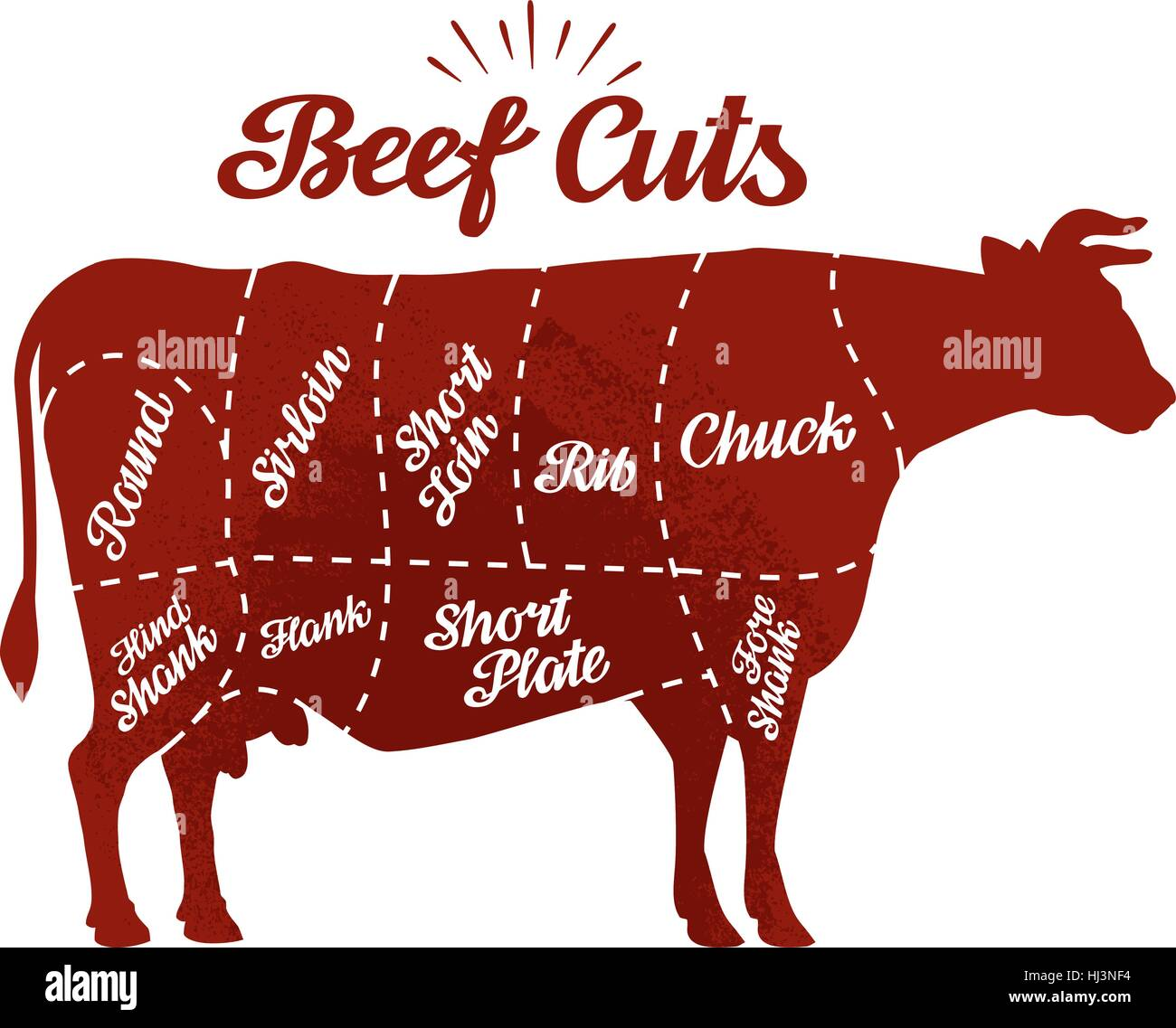 Butcher shop. Beef cuts. Vector illustration - Stock Image