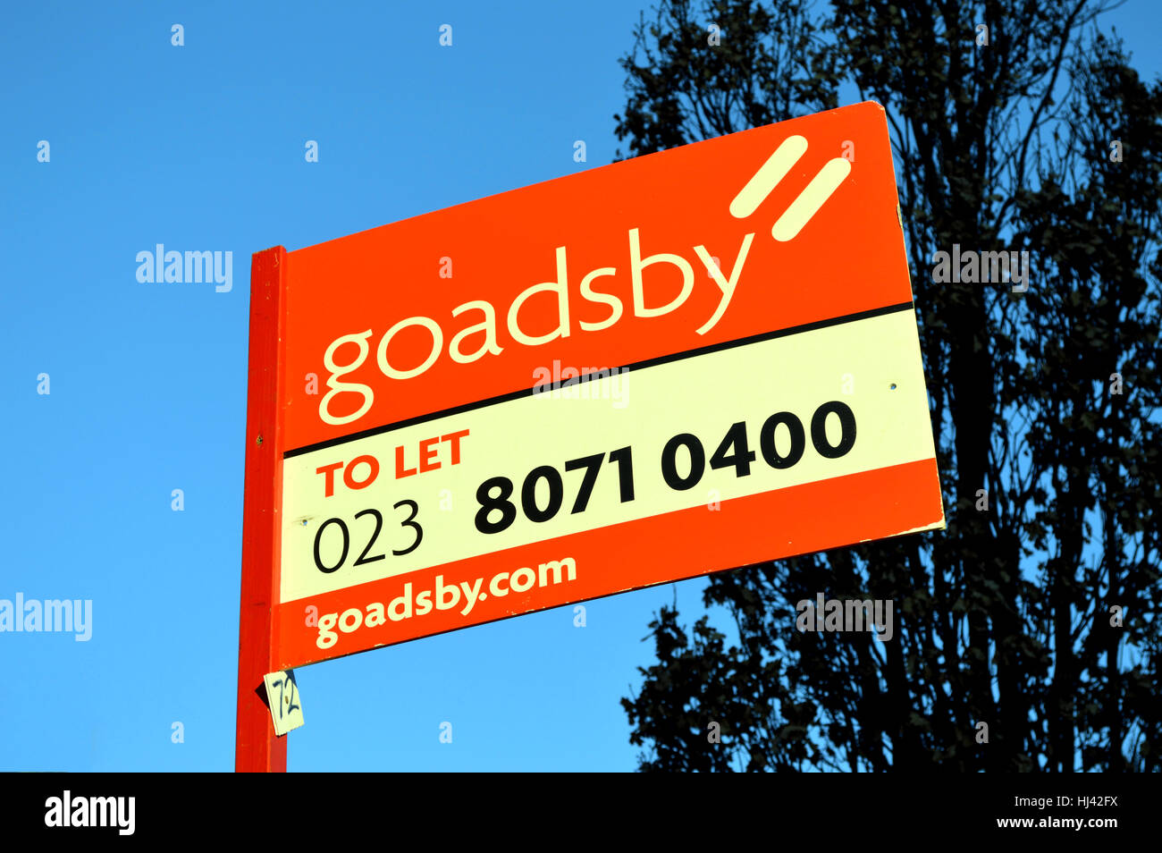 Red estate Agent letting sign - Stock Image